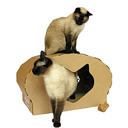 Cat Scratching Posts  |10% Off Storewide| Cat Towers | Cat Trees