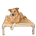 Kuranda Dog Beds  | 10% Off Elevated Dog Beds