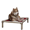 Senior Dog Products  |30% Off Storewide| Orthopedic Dog Beds, Dog Harnesses, Pet Steps, Dog Boots