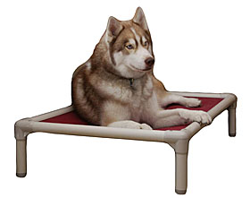 Outdoor Dog Beds  | 10% Off | SALE Outdoor Dog Beds |  Outdoor Dog Bed, Waterproof Dog Beds, Outdoor Dog Cots