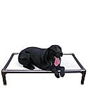 Elevated  Dog Beds  |10% Off Storewide|Sale Raised Dog Beds |  Kuranda Dog Beds | Doggy Snooze Dog Beds