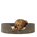 Custom Dog Beds  | 10% Off | Custom Dog Beds