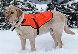 Dog Coats  |10% Off Storewide| Sale Prices Everyday| Dog Travel Coats| Dog Outdoor Coats