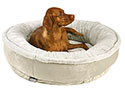 Ringo Dog Bed